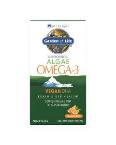 جاردن أوف لايف - مينامي طحالب أوميغا-3 نباتي DHA