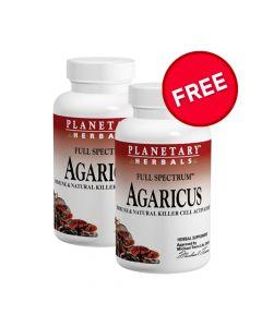 Planetary Herbals Agaricus Full Spectrum 500 mg