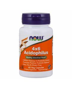 Now - 4x6 Acidophilus Healthy Intestinal Flora